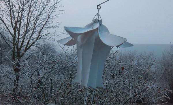 skyflowers-Winter