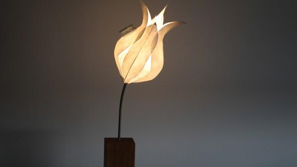 Tischleuchte Tulpe Elegant Lady (XS) mit Eichenholzfuß und Textilkabel