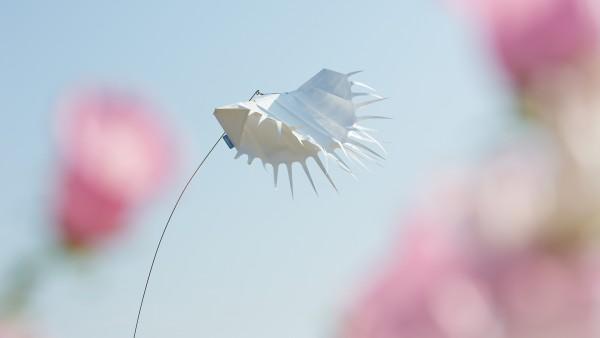 Windspiel Venus-Fliegenfalle