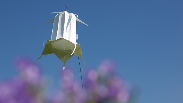 Windspiel Wiesenglockenblume